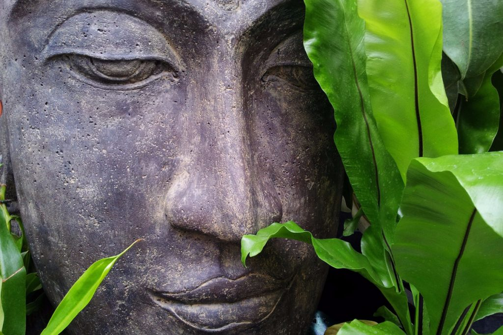 A Zen Master Reveals 10 Essential Mindful Habits That Will Make You Much Happier