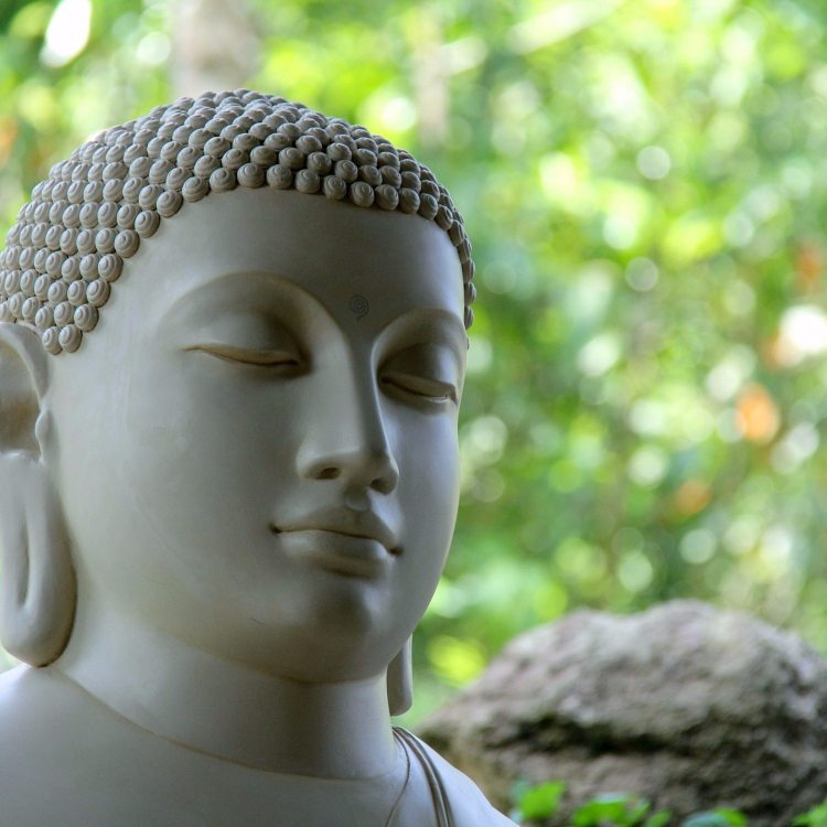 7 Profound Lessons From Zen Buddhism That Will Change Your Perspective on Life